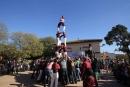 Els Xics de Granollers a la Festa de la Mongeta del Ganxet 2015
