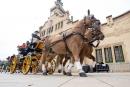 Cavalls i carruatges al seu pas per l'Ajuntament, l'arribada de la passada.