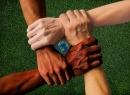 Diversitat i Convivència