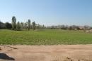 Vista del parc del Falgar