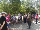 Jornada Coneix les papallones del Parc del Falgar